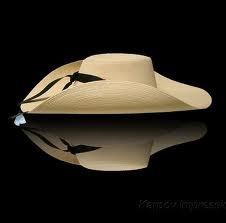f3344b1e5c14f Sombreros De Tlapehuala Guerrero -   1