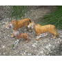 Tigres De Coleccion Para Niños Y Adultos (schleich)