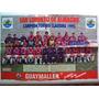 Poster San Lorenzo De Almagro Campeon Torneo Clausura 1995