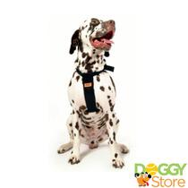 Cinto De Segurança P/ Cães Cachorros (g)