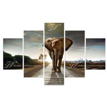 Elefante Caballo Tigre Lobo - Cuadros Decorativos Y Modernos