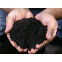 Substrato Aquapaisagismo - Pacote Econômico 5kg Sem Juros