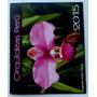 Calendario Orquídeas Perú 2015