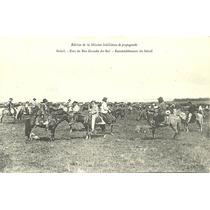 Cartão Postal- Rio Grande Do Sul-reunindo O Gado