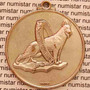 Medalha Canil Kenel Clube Em Campinas Cachorro Pastor Alemão