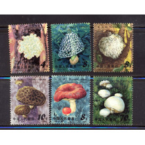 Ch38-china Edible Setas T66 1981 Set De 6 Mnh-