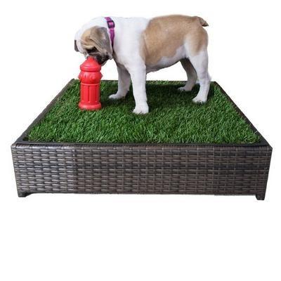 Porch potty tapete para perros entrenamiento pequeno for Ahuyentar perros del jardin
