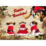 Ropa Navidad Navideña Para Perro Gato Mascota Chico Mediano