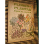 Flores Y Plantas Para El Hogar - Arreglos Floreales Bonsai