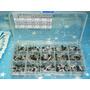 Transistores Transistor Kit 600 Piezas