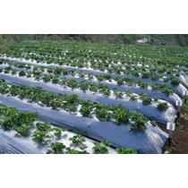 Acolchado Agricola Anchos 1.20 M, Por 915m