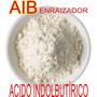 Talco Enraizador - Alporquia-estacas C/ Hormônio Aib 50g