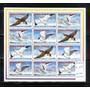 Aves Antigua Y Barbuda - Rebajado