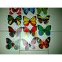 Mariposas Decorativas Con Iman