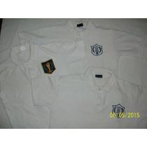 Camisas, Pantalones, Pulloveres, Buzos, Chombas Santalucina