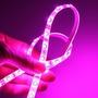 Combo Cinta Led 5050 Rosada Pink 12v 300 Led/rollo 25 Mts