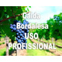 Kit Calda Bordalesa - 2 Kg Sulfato Cobre + 2 Kg Cal Virgem