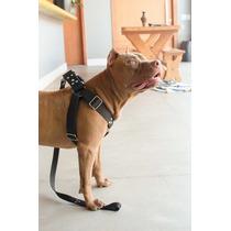 Coleira Peitoral Cachorro Guia Adaptador Doberman Pit Bull
