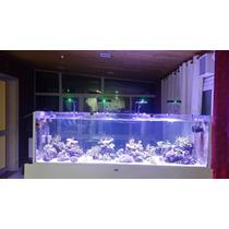 Luminaria De Led Cree 53w 6 Canais 7 Cores Aquario Marinho