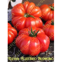 12 Semillas De Tomate Jitomate Costoluto Fiorentino