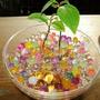 3 Bolsa Perla Tierra Cristalina Flores Planta Ornamentales