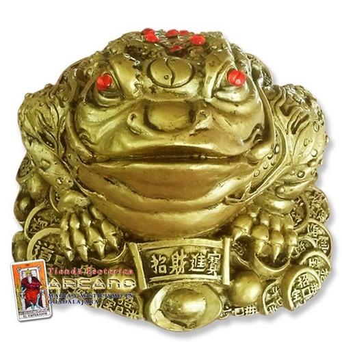 Rana de feng shui para abundancia y prosperidad 590 - Feng shui para el dinero ...