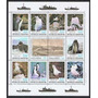 Lámina 45 X 30 Cm. De Sellos De Animales Polares Pinguinos