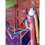 Fabrica De Pipas Mucha 55cmc/gabarito,riscador,suporte,linha