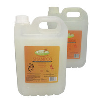 Shampoo E Condicionador Profissional S/sal 5lt - Extrat Liss