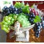 4 Cachos De Uvas Em Silicone Perfeitas Como As Naturais