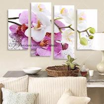 Cuadro Trendy - Flores Orquídeas Zen - Roma India París Pisa