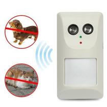 Repelente Ultrasônico Para Cães E Gatos Com Sensor Presença