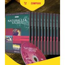 Bbc Naturaleza Salvaje 10 Dvds