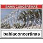 Bahia Concertina
