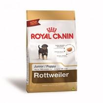 Ração Royal Canin Rottweiler Junior Cães 12kg 2 Unidades