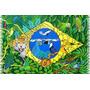 Canga De Praia Bandeira Do Brasil/pássaros/tatu/arara/onça