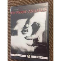 Un Perro Andaluz Luis Buñuel Salvador Dalí Dvd Nuevo
