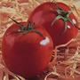 90 Sementes De Tomate Santa Cruz Kada (paulista)