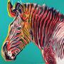 Cuadro Cebra Por Andy Warhol, Pop Art, 100 X 100 Cm.