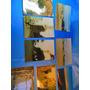 El Arcon Lote De 70 Fotos De Valizas Uruguay15001 11