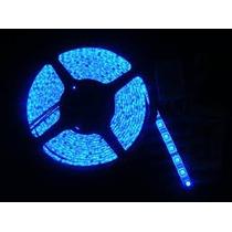 Rollo Tira Led 3528 300 Led 5 Metros 12v Azul Envio Gratis
