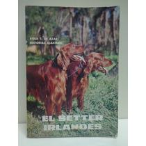 Libro De La Raza El Setter Irlandes