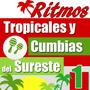 Ritmos Tropicales, Ritmos Cumbias Para Teclados Yamaha Vol.1