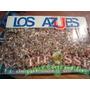 Libro U De Chile 1992, Los Azules , Tifossi