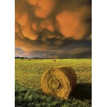 Rompecabezas Heye De 1000 Piezas: Rising Storm