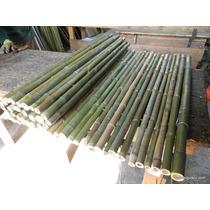 Cerco De Cañas De Bambu Por Metro Cuadrado