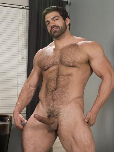 porn gay Vince ferelli
