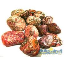 Jaspe Leopardo Unid. 2cm Pedra Gema Natural Polida Coleção
