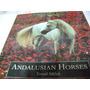 Caballos De Raza Andaluces Andalusian Horses Tomas Micek