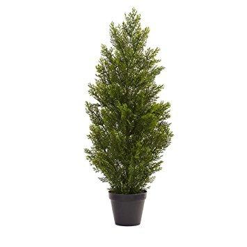 rbol de navidad casi mini natural pino cedro interior ex 268000 en mercado libre - Arbol De Navidad